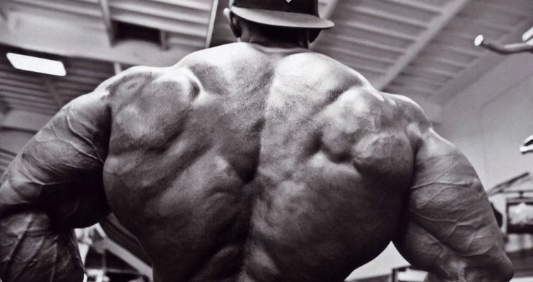 What's The Bodybuilding Subculture?
